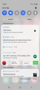 Screenshot_20210206-133458_One UI Home (1).jpg
