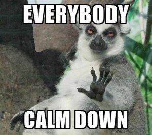 evrybody-calm-down-meme.jpeg
